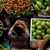 """ANZ: """"Nền kinh tế Việt Nam đang bước vào giai đoạn khả quan"""""""