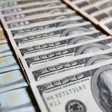 Đồng USD chinh phục đỉnh cao 2 tuần