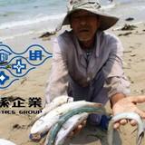 """Chân dung tập đoàn Formosa dính nghi án """"cá chết"""" tại Việt Nam"""