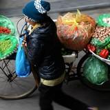 [Infographic] Người miền Nam thích chợ truyền thống, dân miền Bắc thích cửa hàng tiện lợi