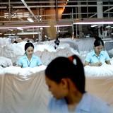 """""""Ông lớn"""" may mặc Hong Kong mở nhà máy 50 triệu USD tại Vĩnh Phúc"""