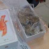 Trong hộp iPhone 6S chính hãng nguyên seal chỉ có ... đá