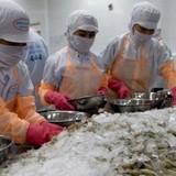 Đàm phán FTA Việt Nam - Hàn Quốc đạt được nhiều tiến bộ