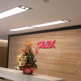 Gelex sẽ bán 10% vốn cho VCSC giá 14.434 đồng/cổ phiếu?