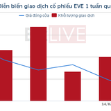 """[Cổ phiếu nổi bật tuần]: EVE với mẫu hình """"Dead Cat Bounce"""", cú lừa đánh gục dân đầu cơ?"""