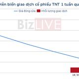 [Cổ phiếu nổi bật tuần] TNT - nhà đầu tư sẽ không phải thua đau nếu nhận ra mẫu hình bearish flag
