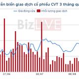 [Cổ phiếu nổi bật tuần] Giá trên 40.000 đồng/cổ phiếu, CVT làm lợi cho cả dân đầu cơ và giá trị