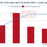 [Cổ phiếu nổi bật tuần] DHC kỳ vọng vào mảng giấy công nghiệp