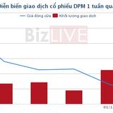 [Cổ phiếu nổi bật tuần] DPM – về giá thấp nhấp trong một năm qua