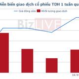 [Cổ phiếu nổi bật tuần] TDH – Lợi nhuận tốt, giá cổ phiếu tăng hơn 30% trong 1 tháng