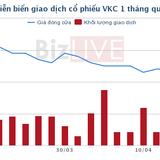 Thị giá hơn 11.000 đồng/cp, VKC vẫn tính phát hành 1 triệu cổ phiếu ESOP