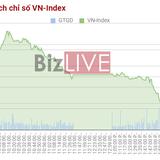 Chứng khoán chiều 27/6: Nhờ dư âm ĐHĐCĐ, cổ phiếu ITA đi ngược cả thị trường