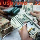 Standard Chartered: tỷ giá sẽ lên mức 22.500 USD/VND