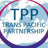 Việt Nam sẽ làm gì khi TPP không được thông qua?