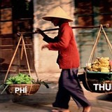 """<span class='bizdaily'>BizDAILY</span> : Vì sao người Việt """"gánh"""" thuế phí cao nhất ASEAN?"""