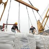 Trung Quốc giảm mua gạo từ Việt Nam