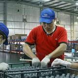 Việt Nam thay Trung Quốc thành trung tâm công nghiệp thế giới: Điều huyễn hoặc?
