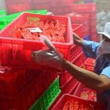 Bí thư Hà Nội yêu cầu xử lý trách nhiệm cán bộ trong vụ xúc xích Viet Foods