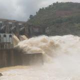 Thủy điện Hố Hô bị phạt hơn 115 triệu đồng