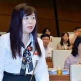 Đại biểu Quốc hội lo Việt Nam miễn giảm thuế quá nhanh và rộng
