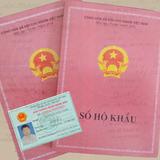Chỉ đạo nổi bật: Chính phủ đồng ý bỏ sổ hộ khẩu, chứng minh nhân dân