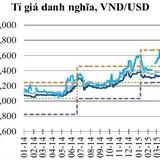 """""""VND đang được định giá cao"""""""