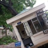 Bảo hiểm Bảo Việt tổn thất 3,6 tỷ đồng sau giông lốc tại Hà Nội
