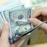 Cá nhân gửi tiền USD vào ngân hàng không được hưởng lãi suất