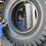 Cao su Đà Nẵng đặt mục tiêu lãi 455 tỷ năm 2015