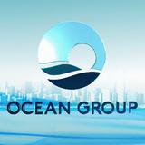 Ông Hà Trọng Nam được bổ nhiệm vị trí Phó chủ tịch HĐQT Ocean Group