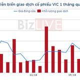 Một tổ chức chi gần 3.800 tỷ để trở thành cổ đông lớn của Vingroup