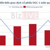 Do đâu OGC bị phạt gần 1,8 tỷ đồng?