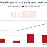 Một tổ chức chi gần 9.000 tỷ gom toàn bộ 48,3 triệu cổ phiếu Vinamilk
