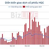 HQC: Dừng phát hành 74,65 triệu cổ phiếu cho nhà đầu tư chiến lược