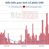 HFC Việt Nam muốn bán 20 triệu cổ phiếu SAM