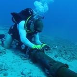 Đứt cáp quang biển ngày 23/4: Đừng đổ lỗi cho cá mập