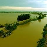 Gần 1.200 tỷ đồng xây đê bao sông Mang Thít