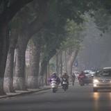 Bắc Bộ sương mù, Trung Bộ mưa dông