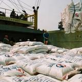 """""""Xuất khẩu gạo giảm mạnh do Trung Quốc thay đổi chính sách"""""""