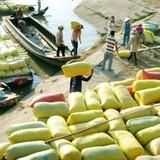 Thị trường 24h: Gỡ khó xuất khẩu nông sản bằng cách nào?