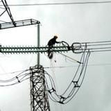 Mua điện từ Trung Quốc giá cao có làm méo mó thị trường?