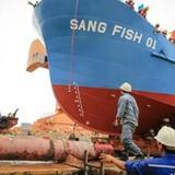 Đóng mới tàu cá ngư dân được hỗ trợ hơn 7 tỷ đồng