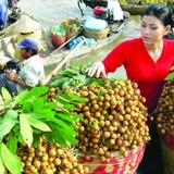 Thị trường 24h: Vì sao trái cây Việt khó xuất ngoại?