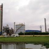 Hàng loạt nhà máy phân đạm đứng trước nguy cơ đóng cửa