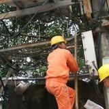 Đầu tư gần 1.300 tỷ đồng cải tạo lưới điện hạ áp nông thôn