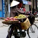 """Thị trường 24h: Dân buôn tiết lộ """"độc chiêu"""" kinh doanh hoa quả vỉa hè"""