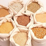 Việt Nam chi 4,1 tỷ USD nhập thức ăn chăn nuôi