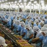 Thủy sản Nam Việt: Chưa thể thoái vốn khỏi Ngân hàng Hàng Hải