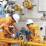 GAS chuẩn bị tạm ứng cổ tức đợt 1/2017 bằng tiền 10%