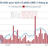 GMD hoàn tất chuyển nhượng 50,9% mảng logistics